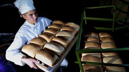В России растёт популярность рабочих профессий
