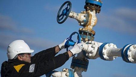 СШАдобили баррель: нефть упала ниже $55
