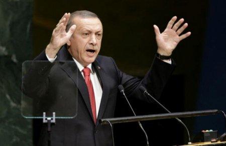 Эрдоган выступил собвинениями вадрес СШАиЕС