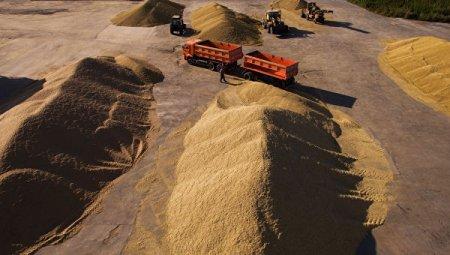 Россия ввела негласные ограничения наэкспорт зерна